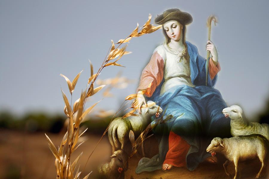 María, Divina Pastora, motivo de Esperanza en tiempo de pandemia