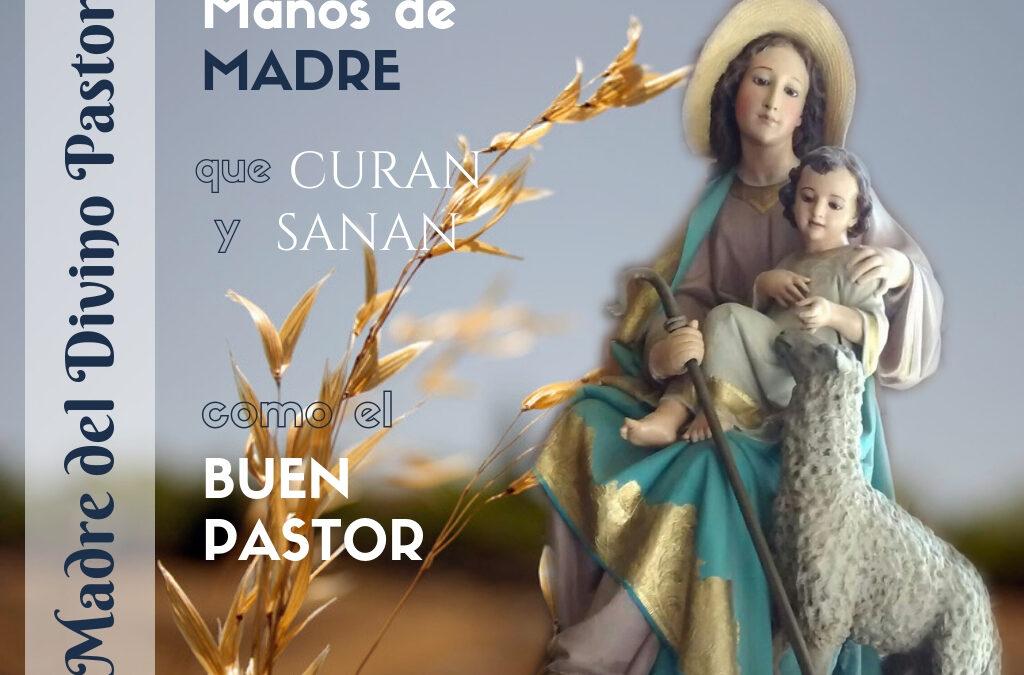 Felicitación en la festividad de la Madre del Divino Pastor