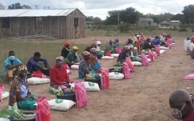 """La """"guerra sin rostro"""" en el norte de Mozambique"""